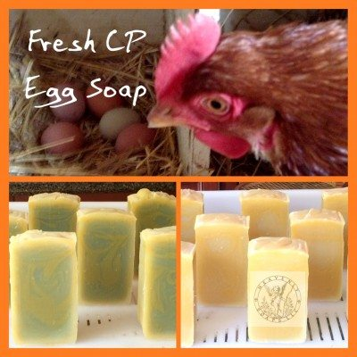 fresh eggs in cold process soap
